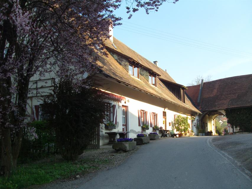 Restaurant Leopold GmbH