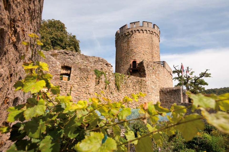 Burgruine bei Alsbach