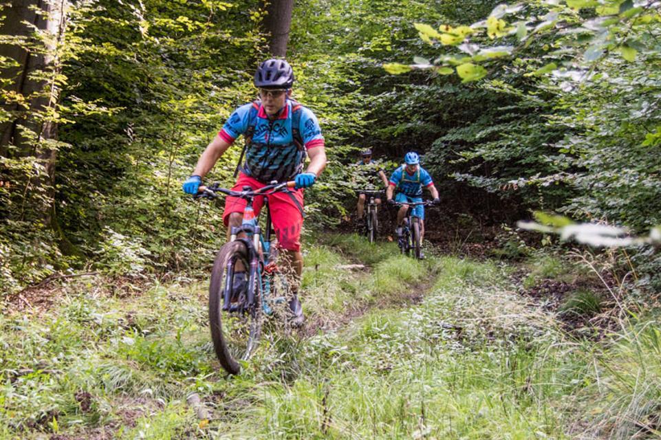 Mountainbike-Rundstrecke Rimbach