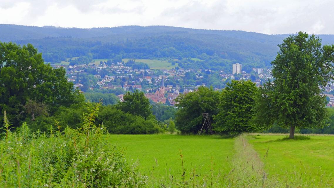 Blick auf Michelstadt