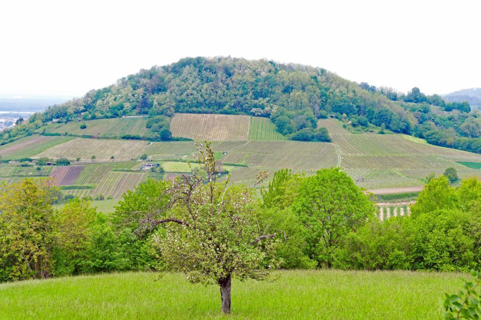 Blick zum Hemsberg