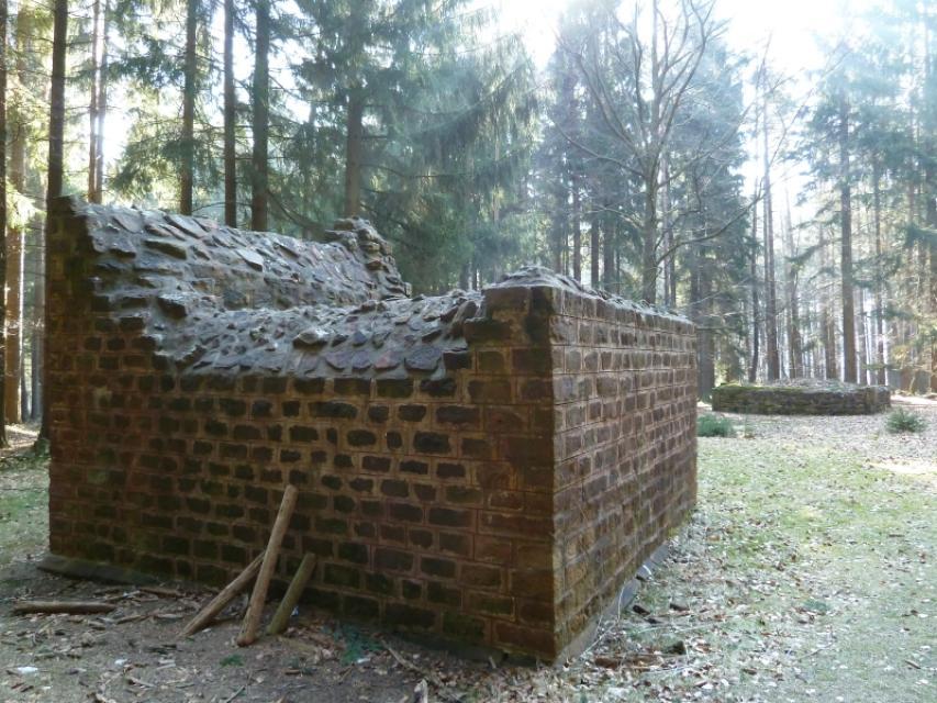Odenwaldlimes Wachtposten 10-30_In den Vogelbaumhecken