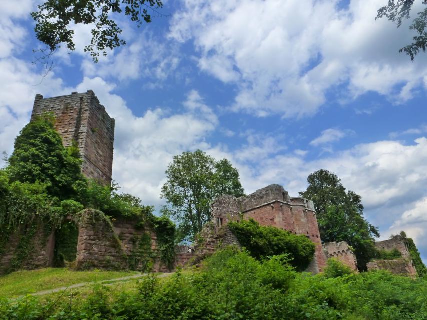 Burg Wildenberg