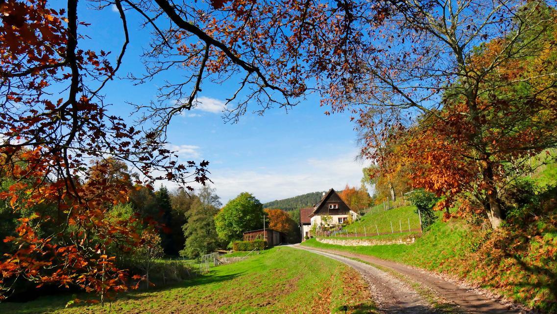 Dörnbach