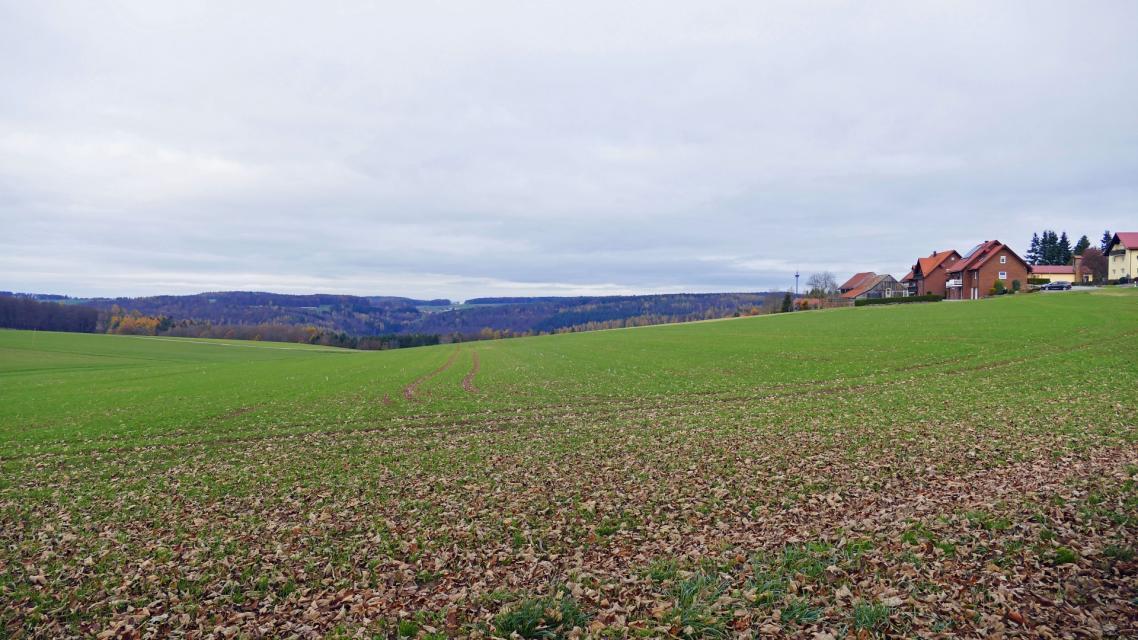 Blick auf Neudorf