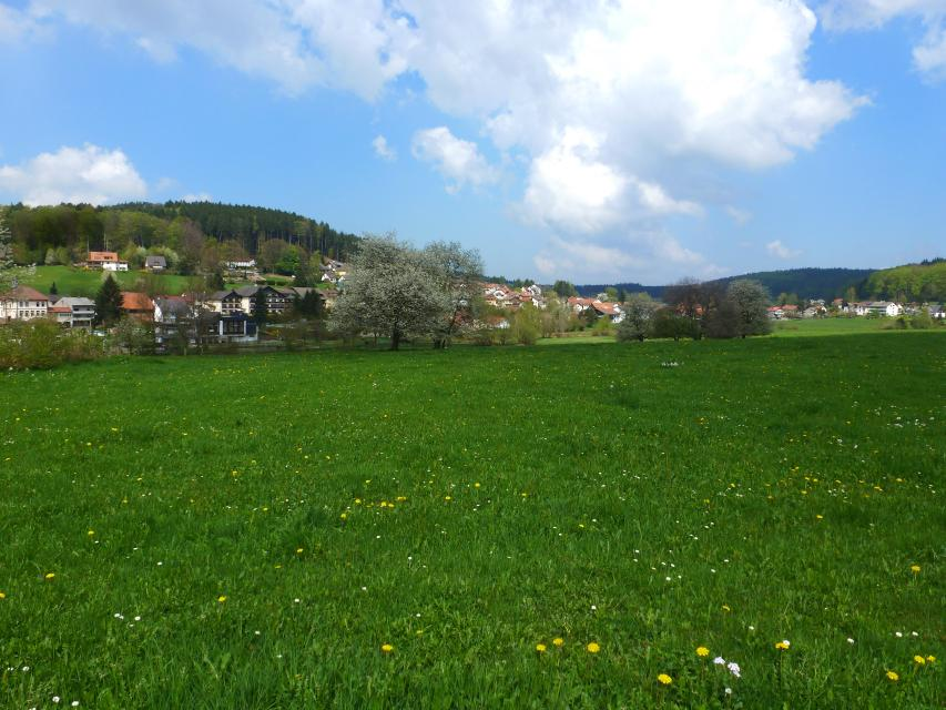 Blick auf Grasellenbach