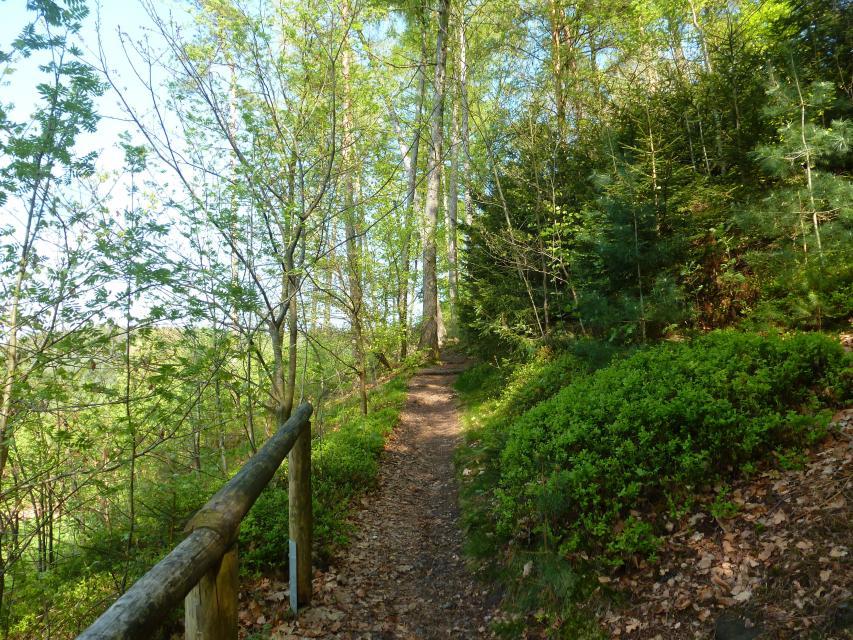 Weg zur Walburgiskapelle