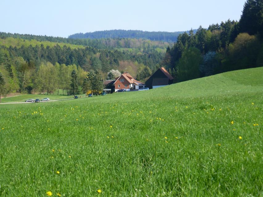 Schardthof