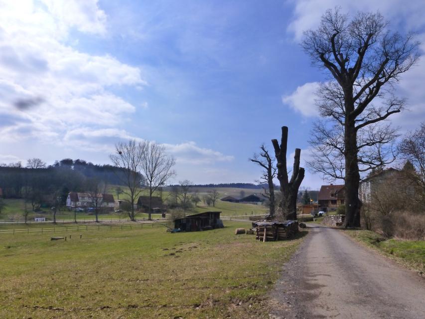 Weg zum Rossbacher Hof