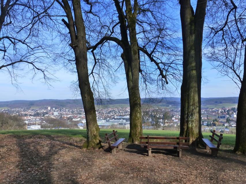 Blick auf Erbach und Michelstadt