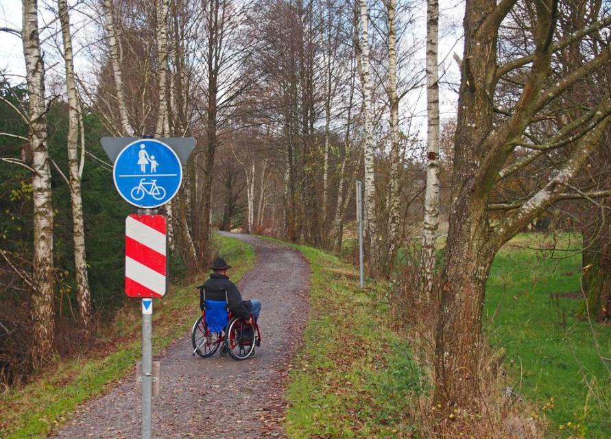 Barrierefreier Weg Wald-Michelbach