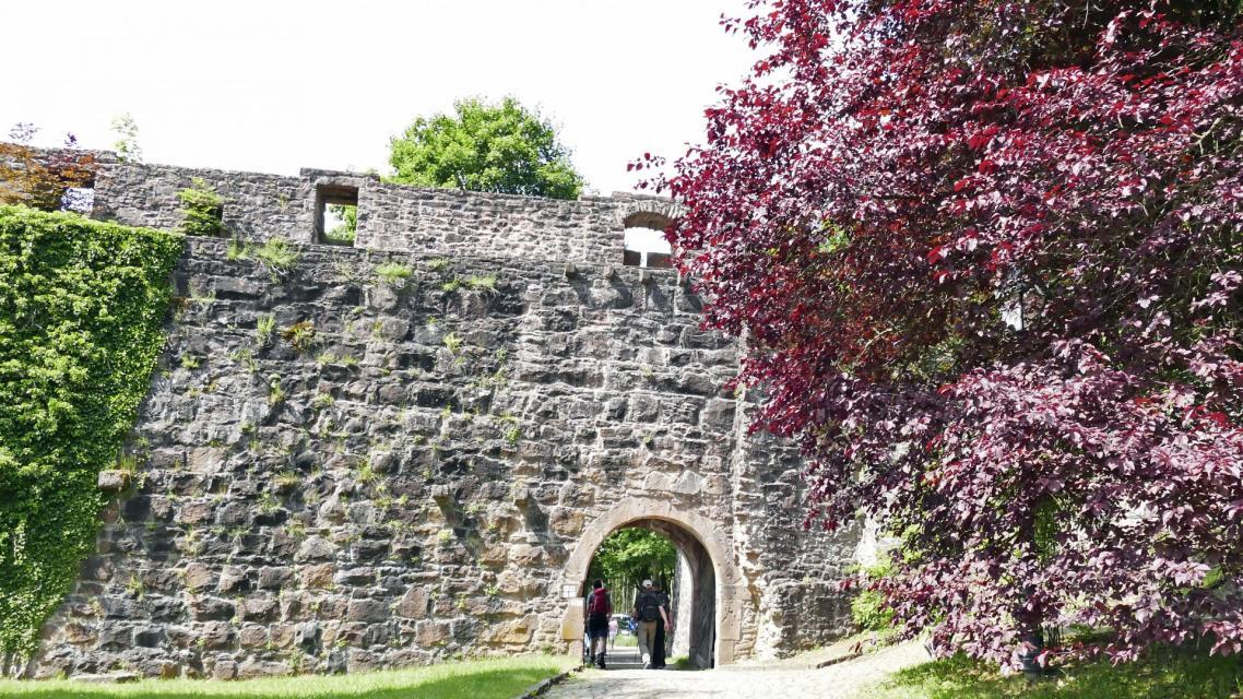 Hirschhorn Burgmauer