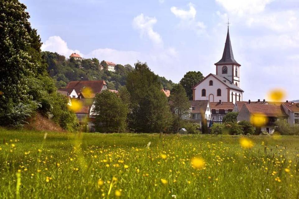 Blick auf Reichelsheim