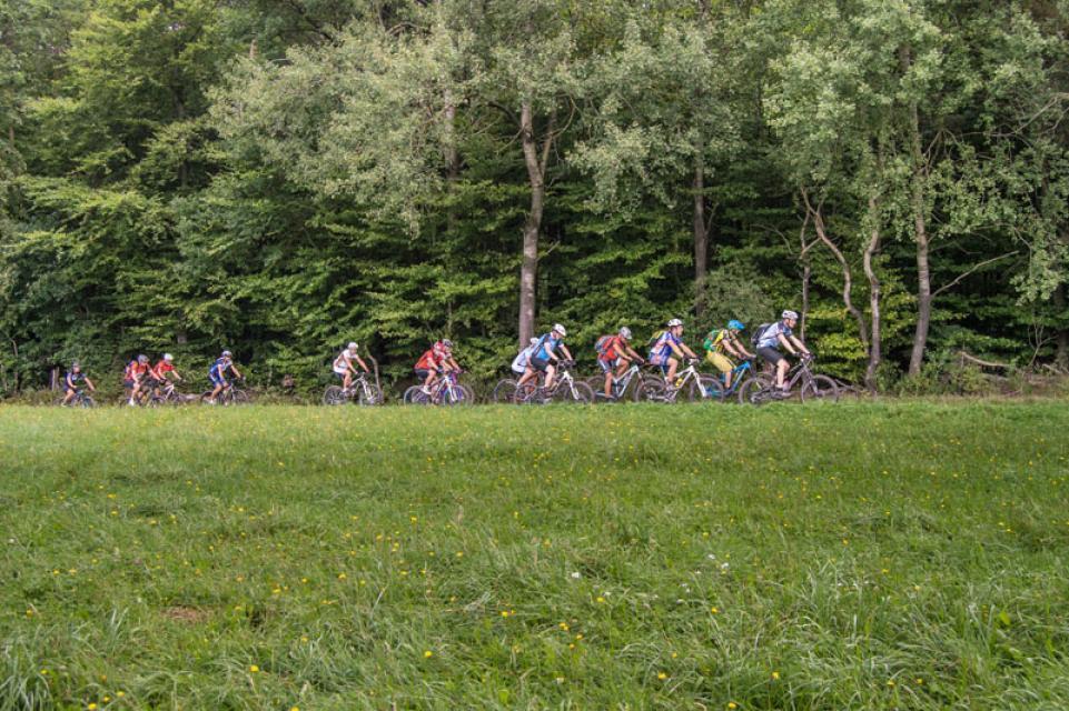 Mountainbike-Rundstrecke Mömlingen 1