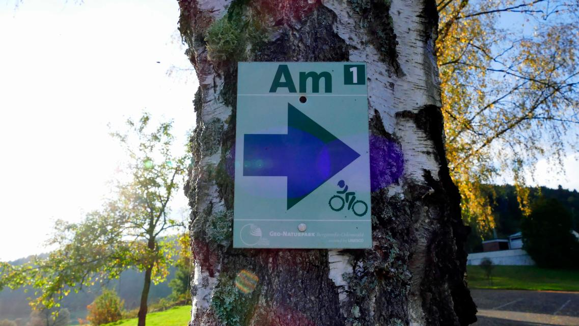 Mountainbikestrecke Amorbach