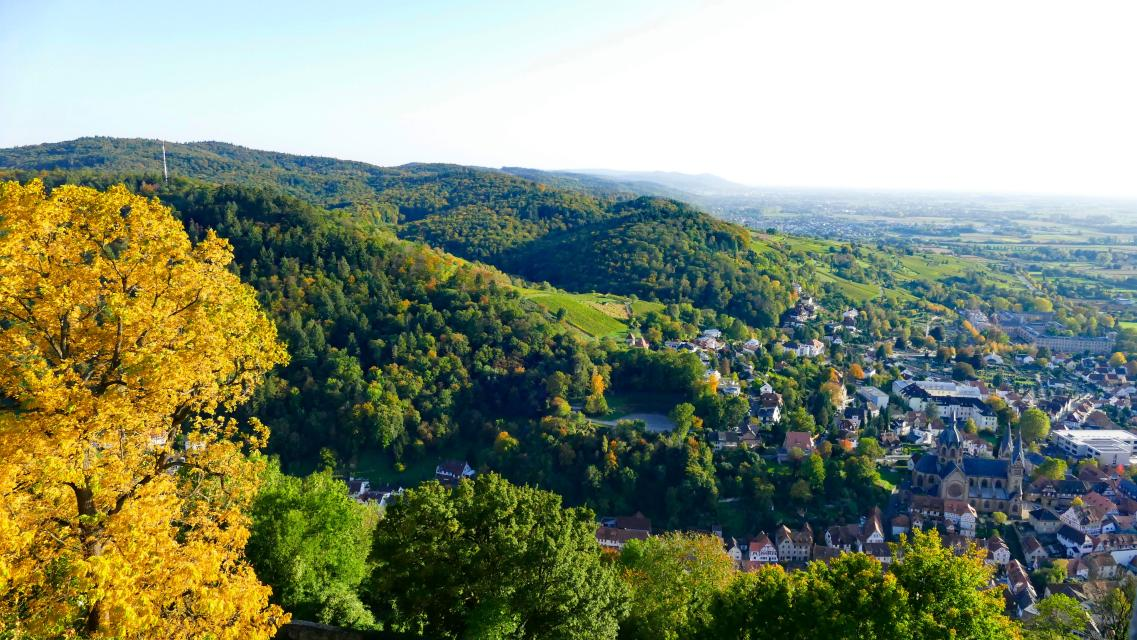 Mountainbike-Rundstrecke Heppenheim