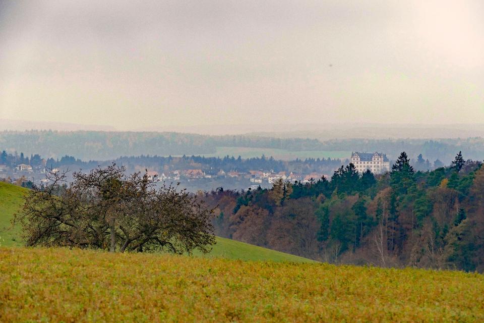 Blick auf Schloss Lichtenberg