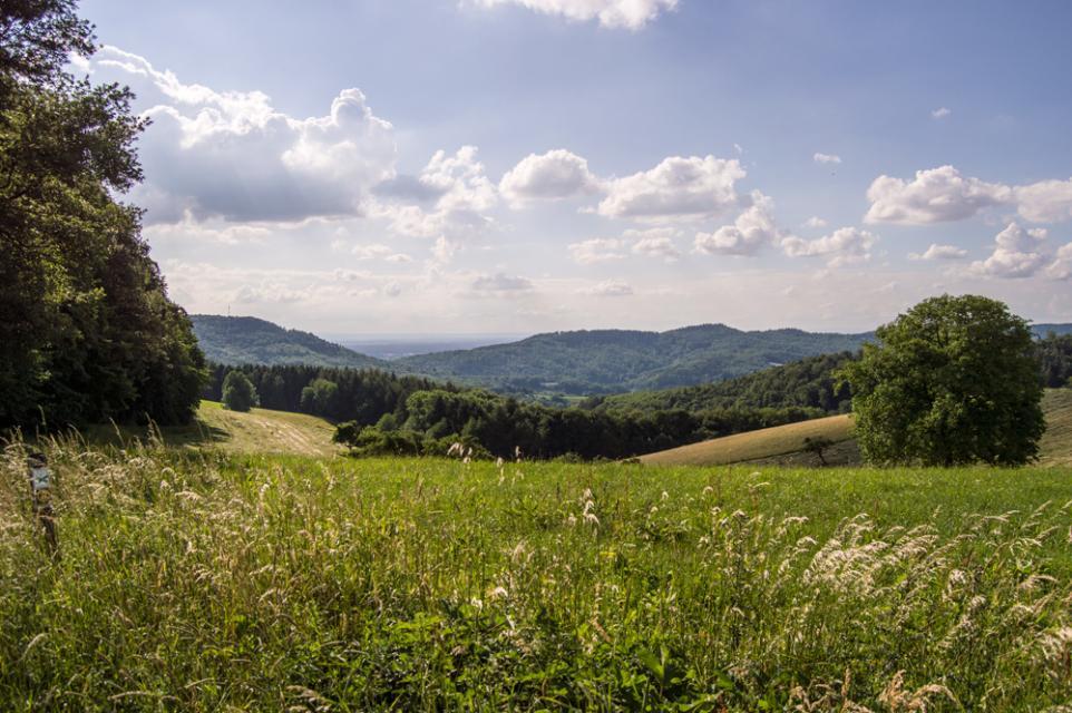 Mountainbike-Rundstrecke Birkenau