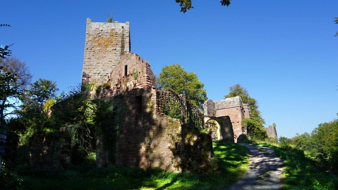 Burgruine Wildenburg