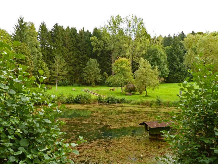 kurpark-grasellenbach-wahlen