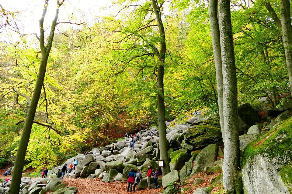 Am Felsenmeer-Rundweg