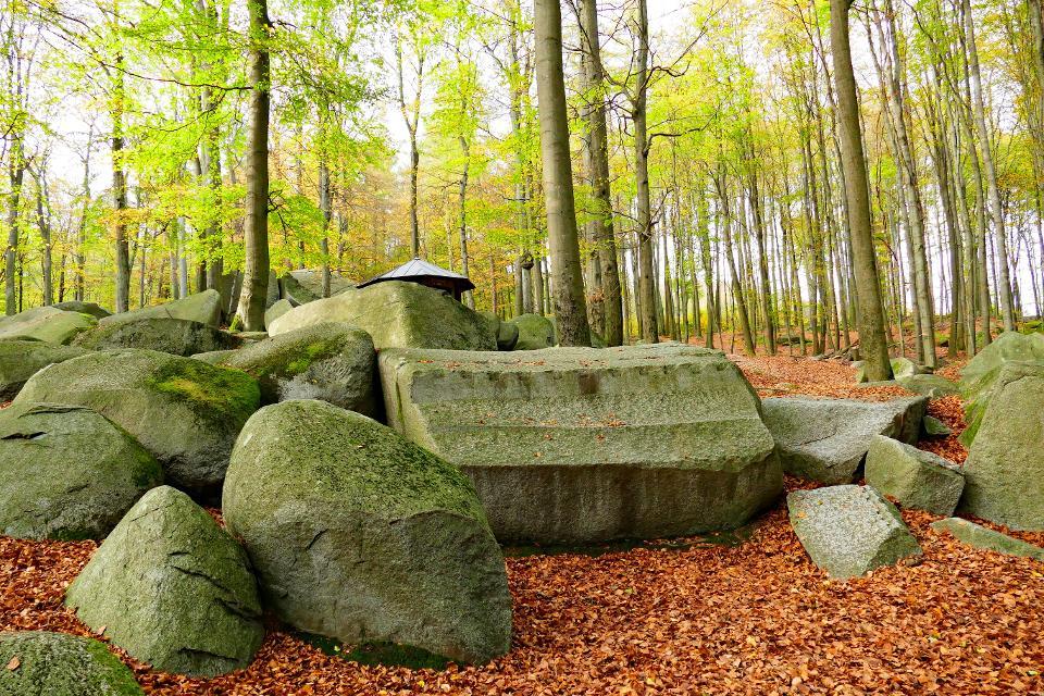Altarstein im Felsenmeer
