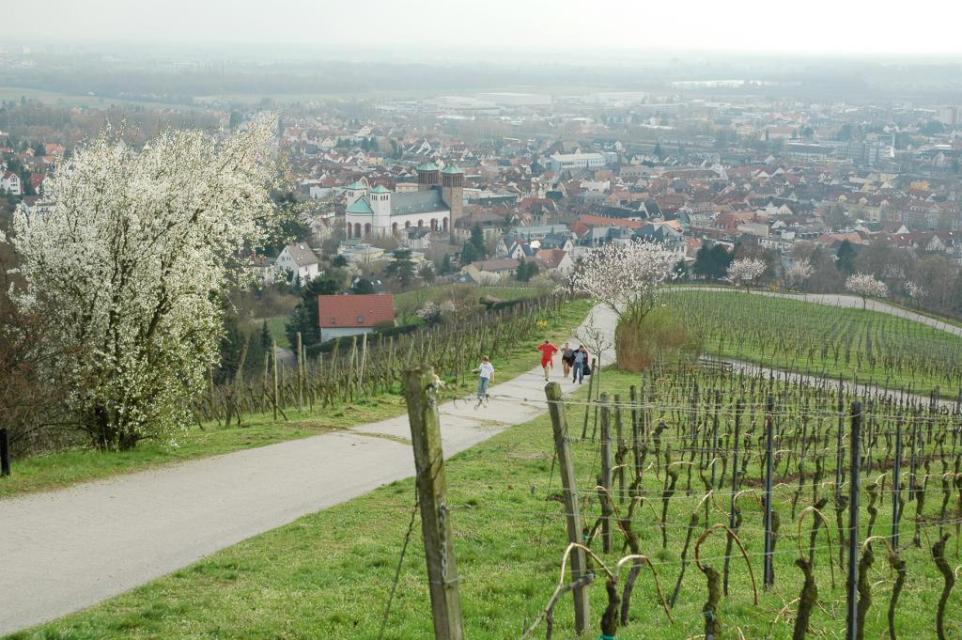 Blick vom Kirchberg auf Bensheim