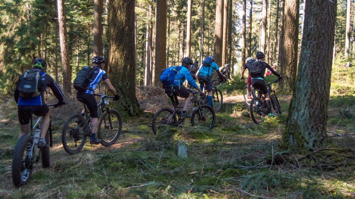 Mountainbike-Rundstrecke Höchst im Odenwald