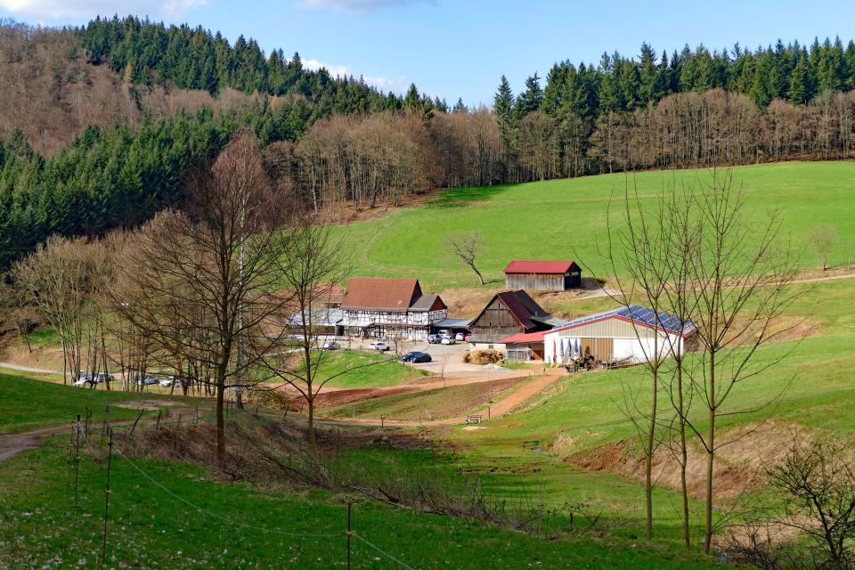 Waldgasthof Alt-Lechtern