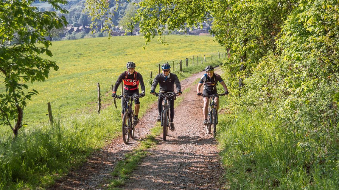 Mountainbike-Rundstrecke Mörlenbach