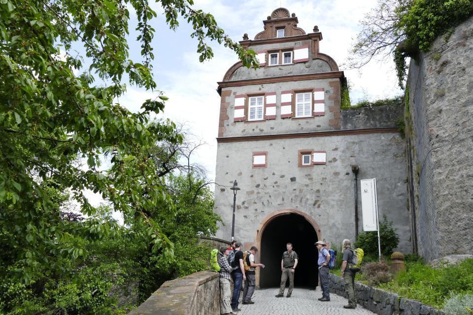 Aufgang Schloss Lichtenberg