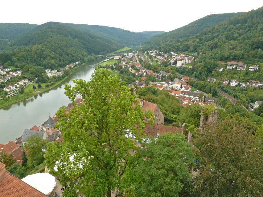 Hirschhorn Neckartal