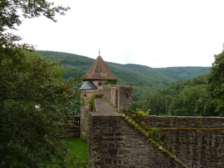 Schloss Hirschhorn
