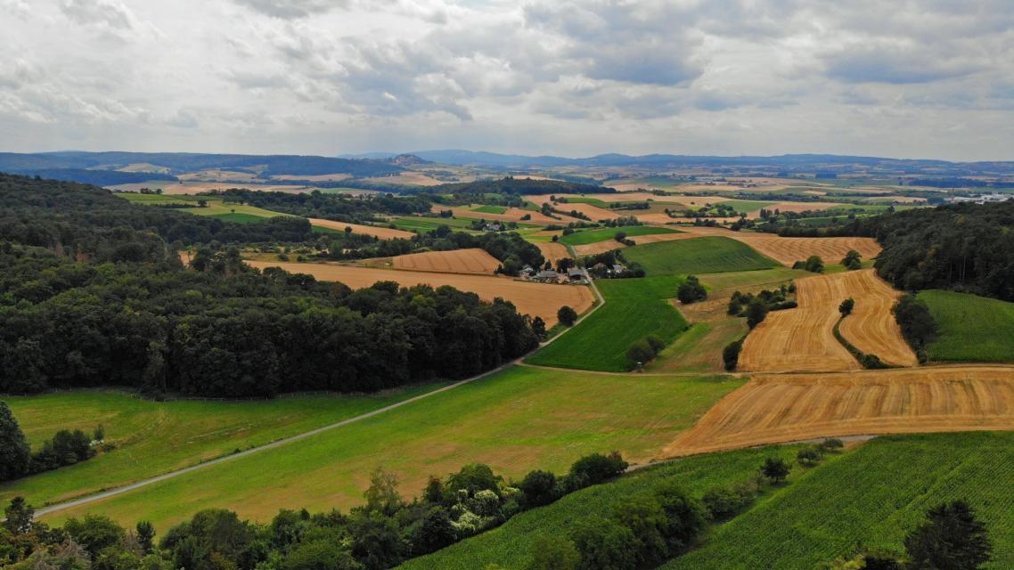 Odenwald-Panorama