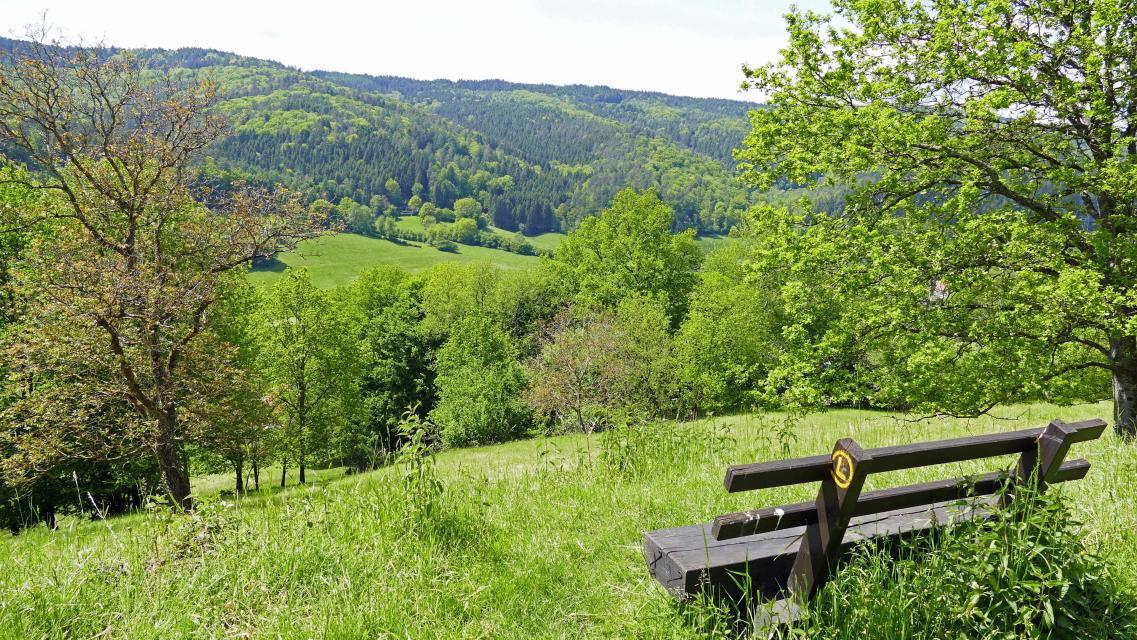 Blick ins Finkenbachtal