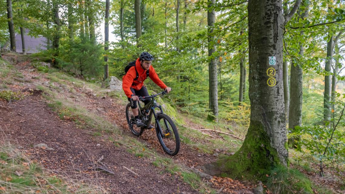 Mountainbiking im Odenwald