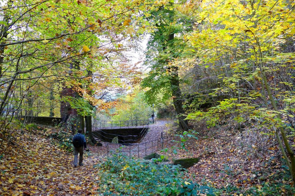 Brücke am Schnatterloch