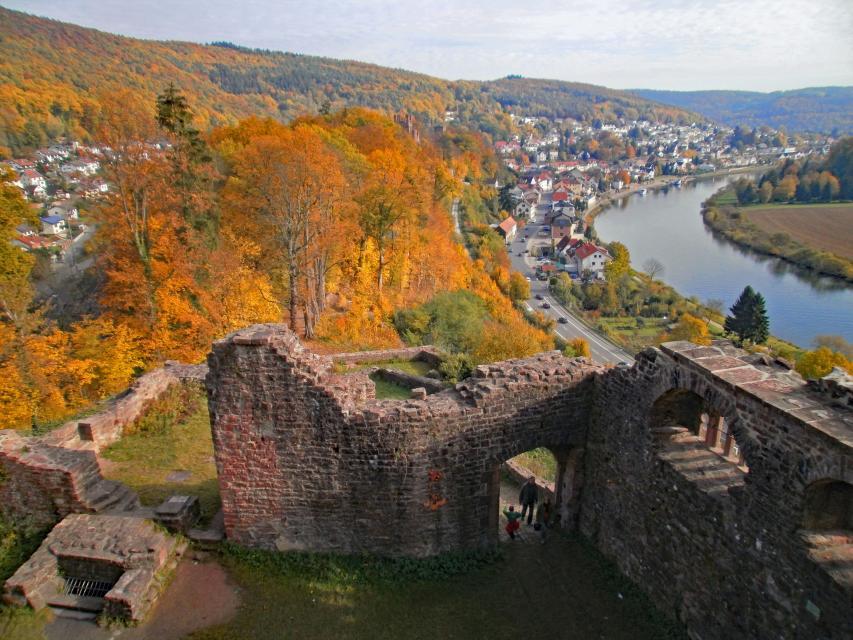 Neckarsteinach Hinterburg