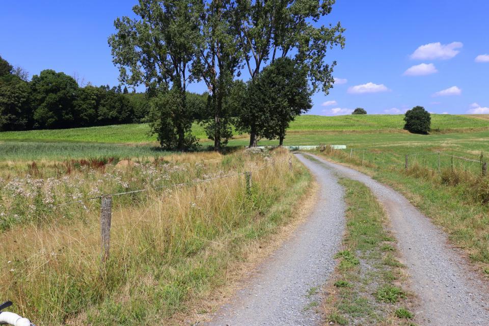 Modau-Radroute