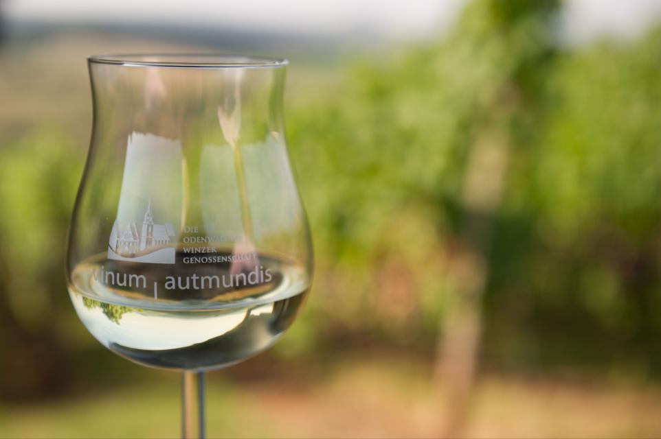 Wein der Odenwälder Winzergenossenschaft