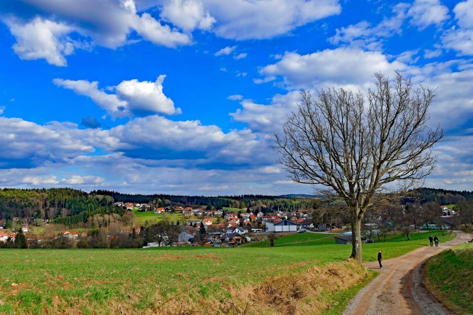 Hammelbach
