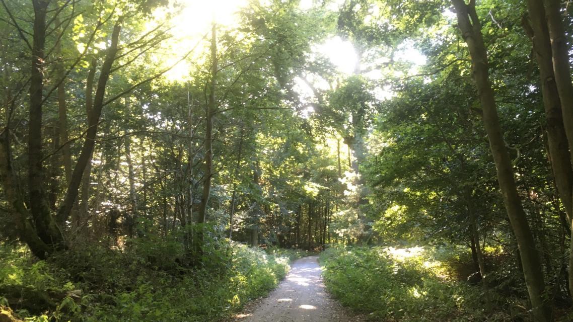 Ostparkweg nähe Darmbachquelle