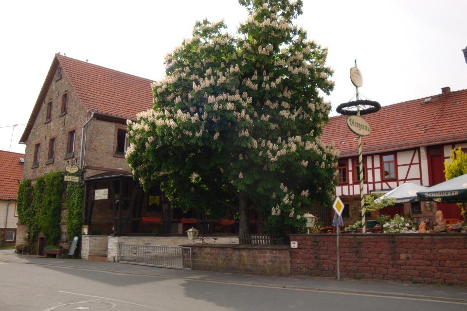 Odenwald-Gasthaus Zum Löwen