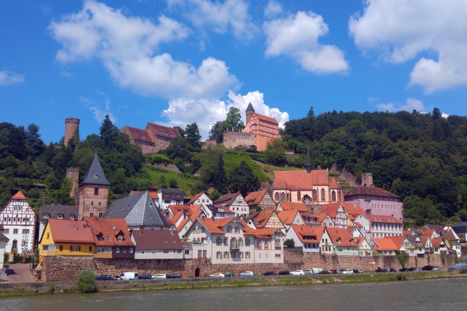 Hirschhorn verfügt über ein einzigartiges Panorama