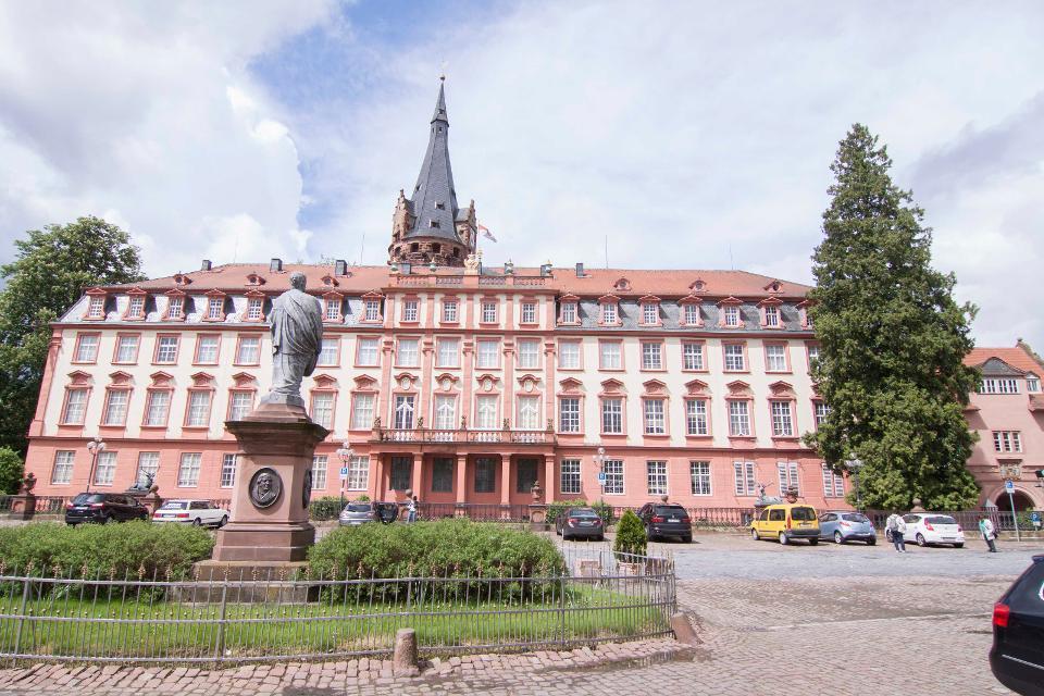 Schloss in Erbach