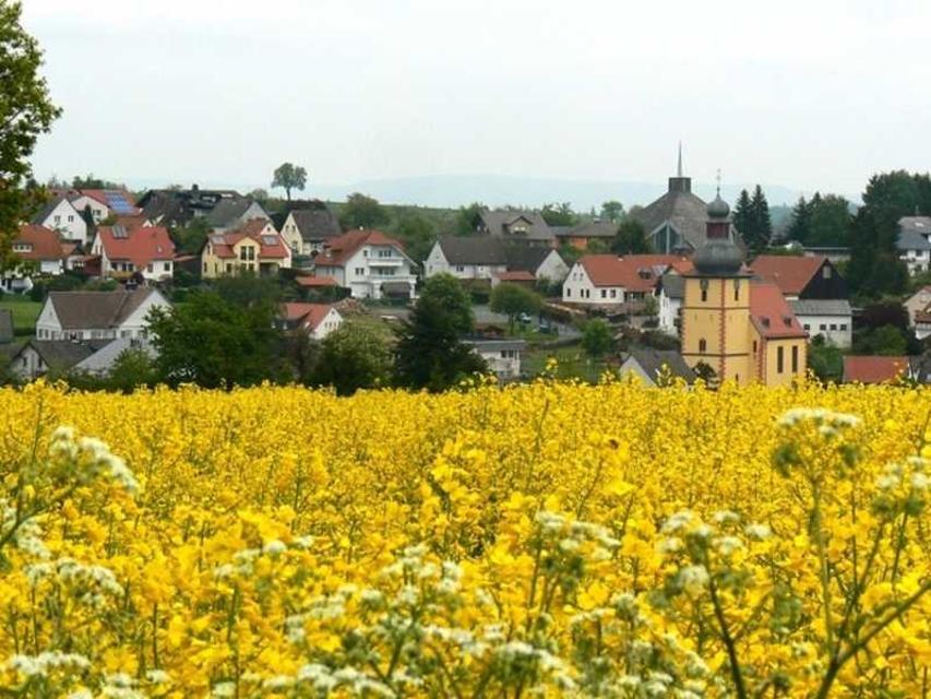 Auf dem Höhenrücken des Odenwaldes liegt Vielbrunn.