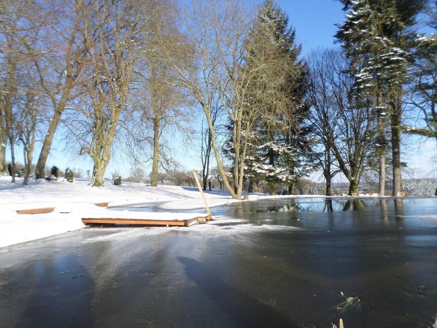 Naturteich im Winter
