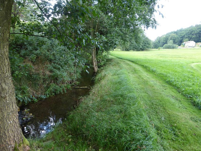 Bachlauf unterhalb der Mühle