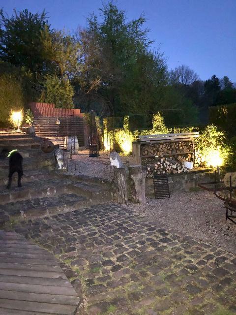 Nachtaufnahme Garten