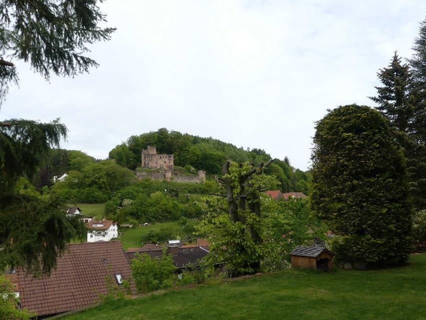 Blick auf die Burgruine Freienstein